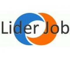 Oferta pracy w Holandii-sprzątanie szklarnii po sezonie